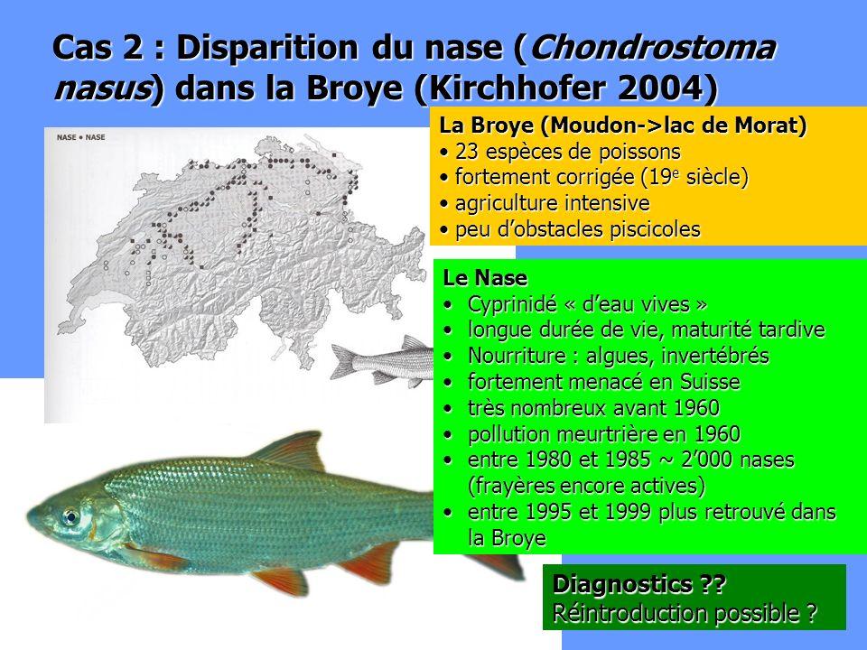 Cas 2 : Disparition du nase (Chondrostoma nasus) dans la Broye (Kirchhofer 2004) Le Nase Cyprinidé « deau vives »Cyprinidé « deau vives » longue durée