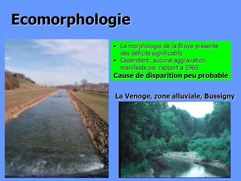 La Venoge, zone alluviale, Bussigny Ecomorphologie La morphologie de la Broye présente des déficits significatifsLa morphologie de la Broye présente d