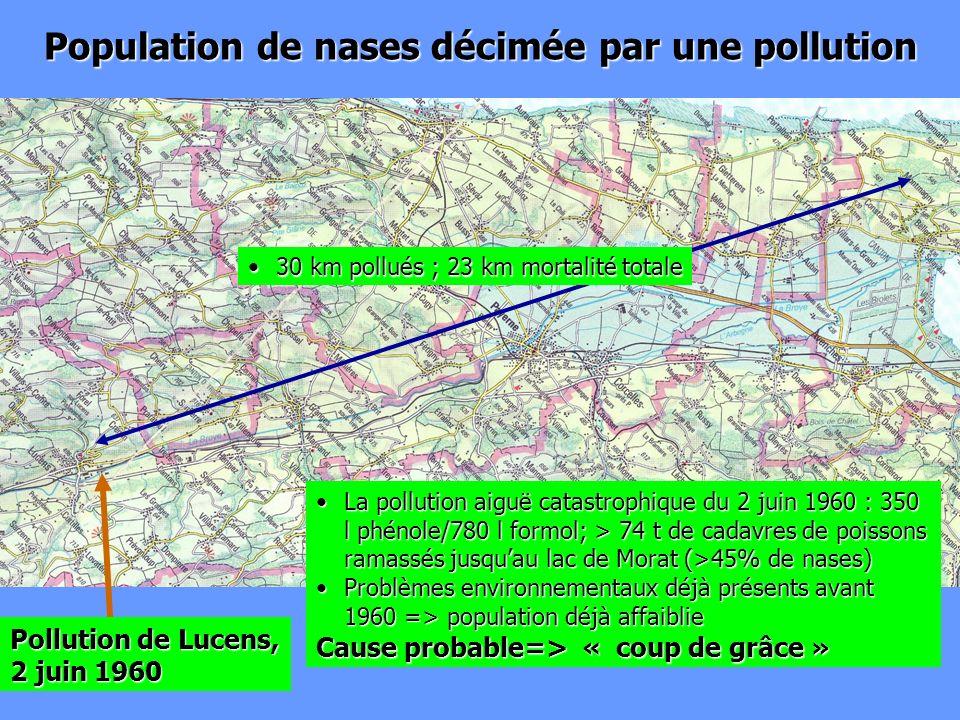 Population de nases décimée par une pollution La pollution aiguë catastrophique du 2 juin 1960 : 350 l phénole/780 l formol; > 74 t de cadavres de poi
