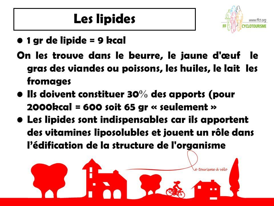 Les lipides 1 gr de lipide = 9 kcal On les trouve dans le beurre, le jaune d'œuf le gras des viandes ou poissons, les huiles, le lait les fromages Ils