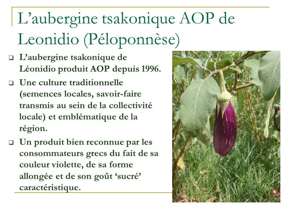 Laubergine tsakonique AOP de Leonidio (Péloponnèse) Laubergine tsakonique de Léonidio produit AOP depuis 1996. Une culture traditionnelle (semences lo