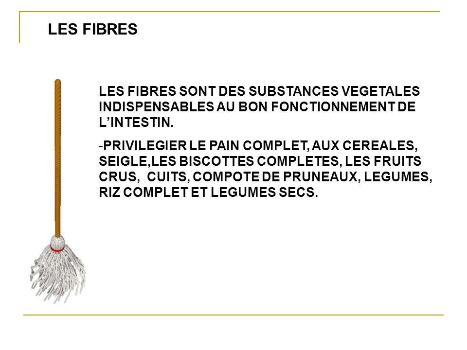LES FIBRES SONT DES SUBSTANCES VEGETALES INDISPENSABLES AU BON FONCTIONNEMENT DE LINTESTIN.