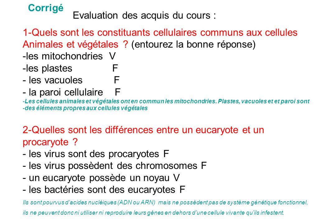 1-Quels sont les constituants cellulaires communs aux cellules Animales et végétales ? (entourez la bonne réponse) -les mitochondries V -les plastesF