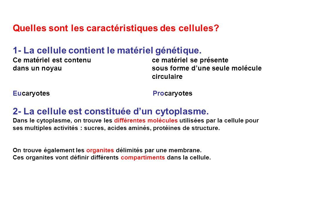 Quelles sont les caractéristiques des cellules? 1- La cellule contient le matériel génétique. Ce matériel est contenu ce matériel se présente dans un