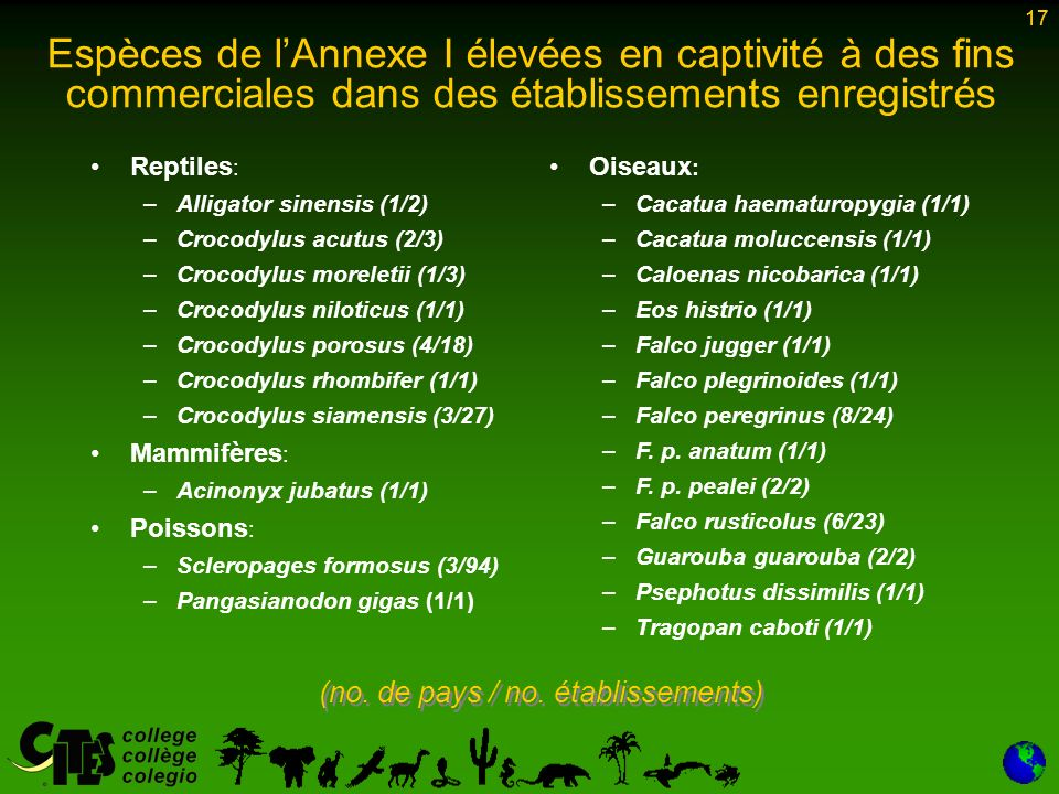17 Espèces de lAnnexe I élevées en captivité à des fins commerciales dans des établissements enregistrés Reptiles : – –Alligator sinensis (1/2) – –Crocodylus acutus (2/3) – –Crocodylus moreletii (1/3) – –Crocodylus niloticus (1/1) – –Crocodylus porosus (4/18) – –Crocodylus rhombifer (1/1) – –Crocodylus siamensis (3/27) Mammifères : – –Acinonyx jubatus (1/1) Poissons : – –Scleropages formosus (3/94) – –Pangasianodon gigas (1/1) Oiseaux : – –Cacatua haematuropygia (1/1) – –Cacatua moluccensis (1/1) – –Caloenas nicobarica (1/1) – –Eos histrio (1/1) – –Falco jugger (1/1) – –Falco plegrinoides (1/1) – –Falco peregrinus (8/24) – –F.