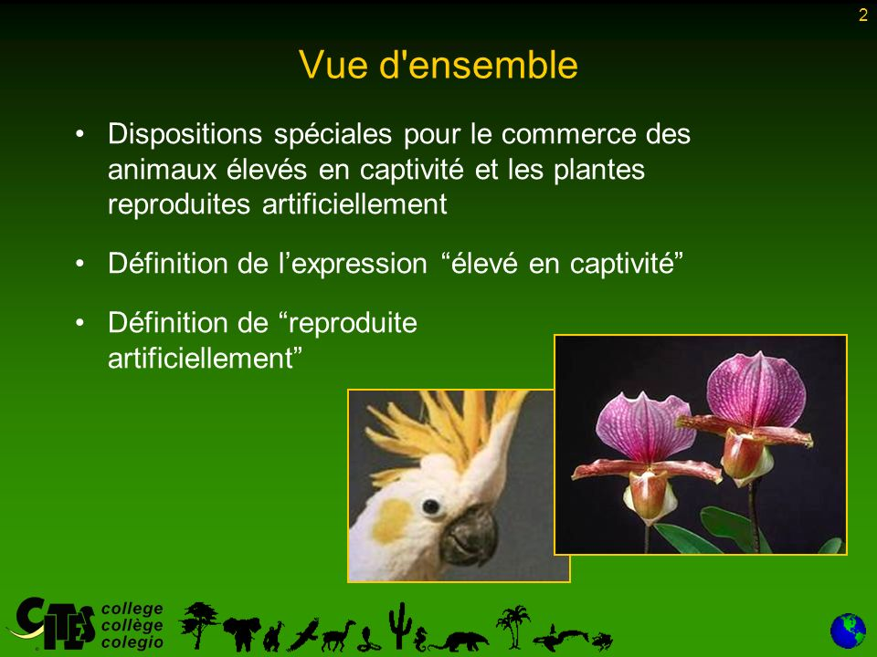 2 Vue d ensemble Dispositions spéciales pour le commerce des animaux élevés en captivité et les plantes reproduites artificiellement Définition de lexpression élevé en captivité Définition de reproduite artificiellement