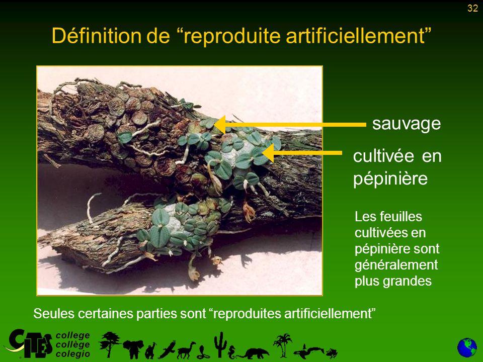 32 Seules certaines parties sont reproduites artificiellement sauvage cultivée en pépinière Les feuilles cultivées en pépinière sont généralement plus grandes Définition de reproduite artificiellement