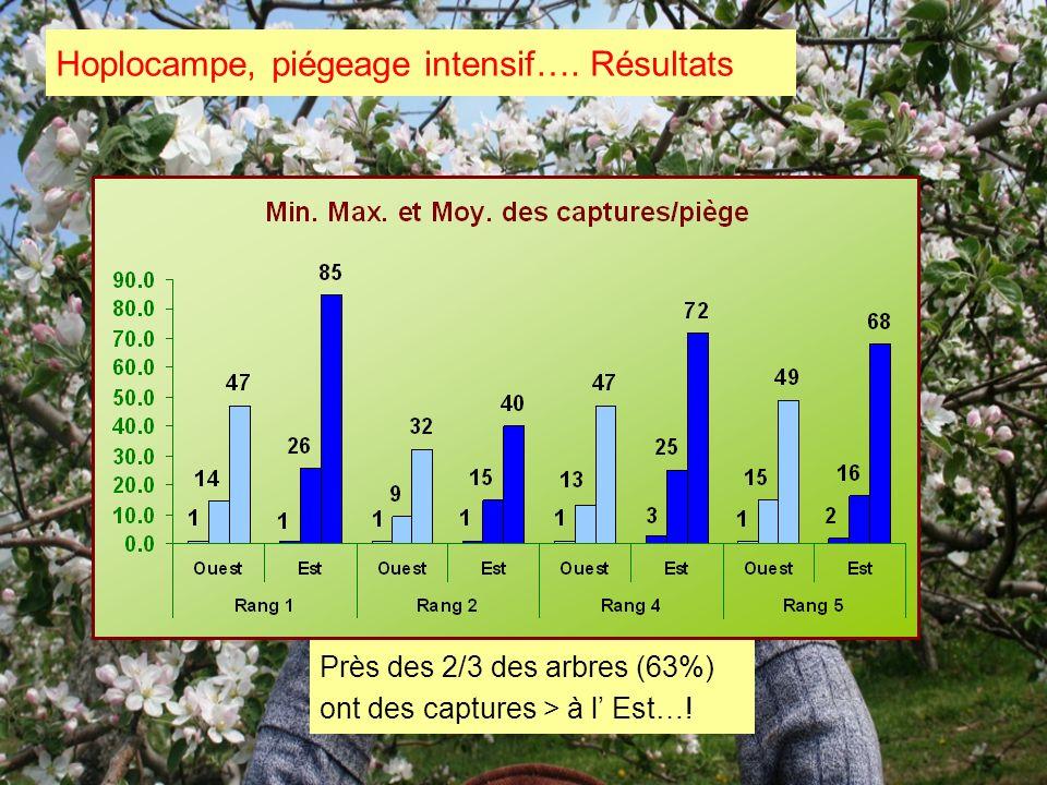 Hoplocampe, piégeage intensif…. Résultats Près des 2/3 des arbres (63%) ont des captures > à l Est…!