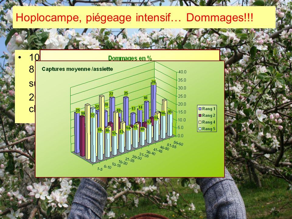 1000 fruits/ traitement le 8 juin sur 50 arbres 20 fruits / arbre de chaque côté du rang Hoplocampe, piégeage intensif… Dommages!!!