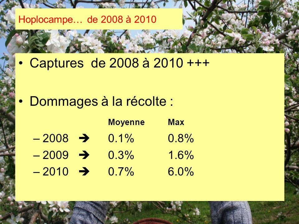 Captures de 2008 à 2010 +++ Dommages à la récolte : MoyenneMax –2008 0.1%0.8% –2009 0.3%1.6% –2010 0.7%6.0% Hoplocampe… de 2008 à 2010