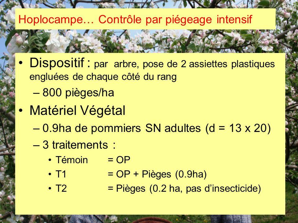 Dispositif : par arbre, pose de 2 assiettes plastiques engluées de chaque côté du rang –800 pièges/ha Matériel Végétal –0.9ha de pommiers SN adultes (
