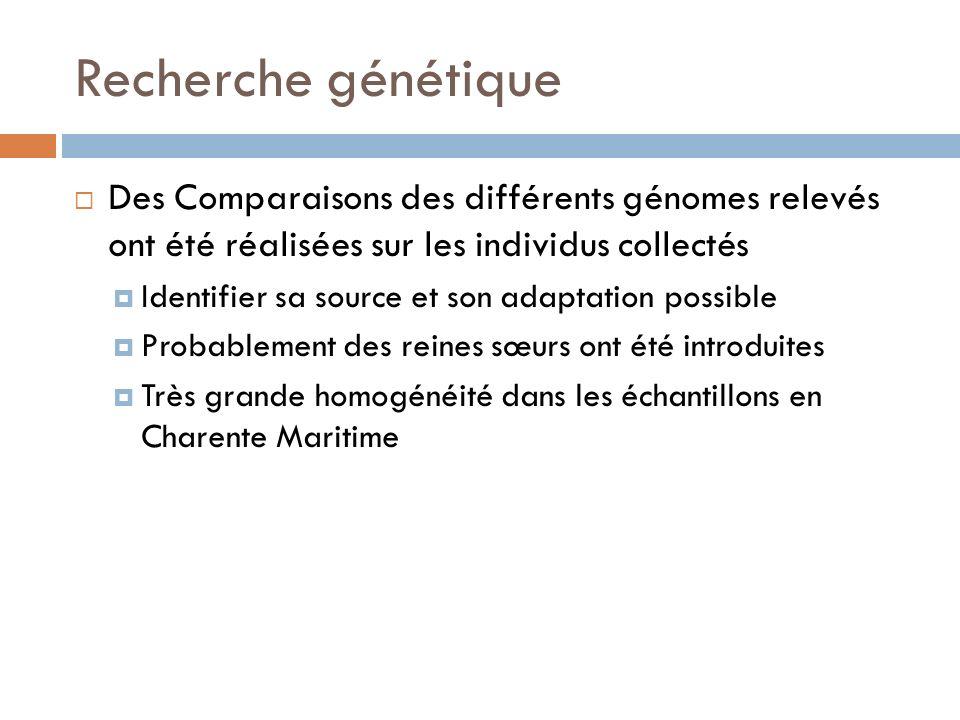 Recherche génétique Des Comparaisons des différents génomes relevés ont été réalisées sur les individus collectés Identifier sa source et son adaptati