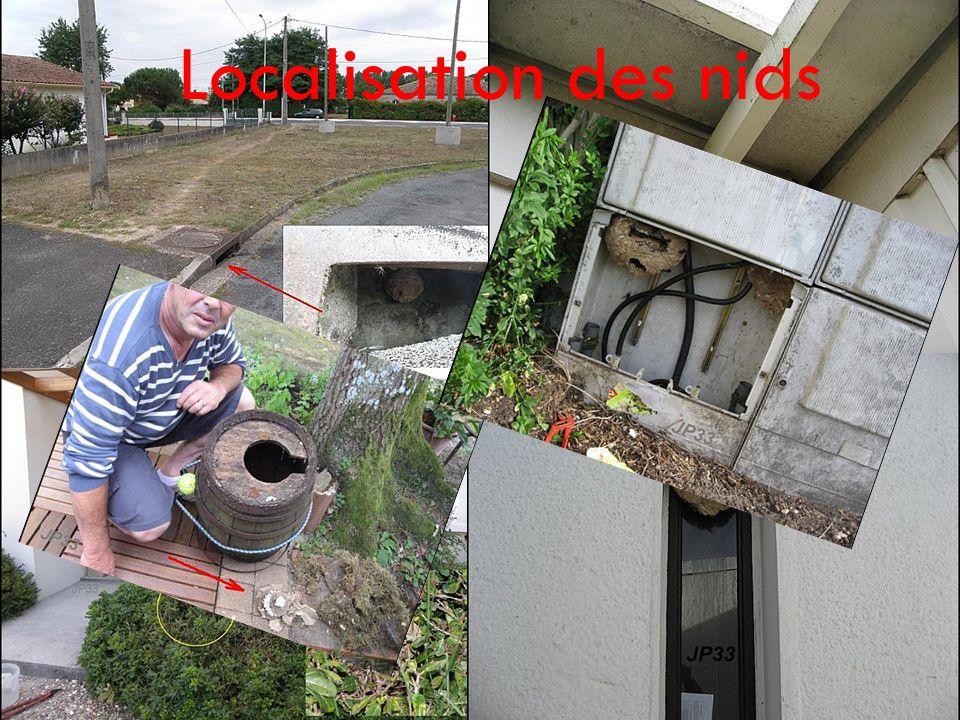 Localisation des nids