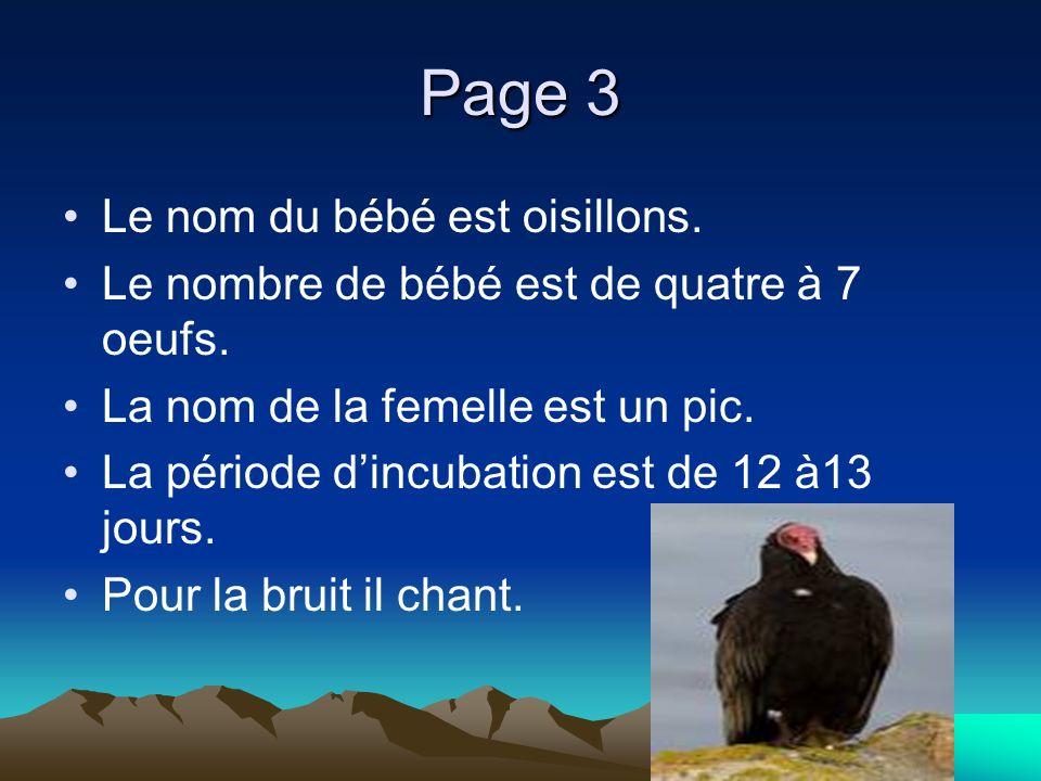 Page 3 Le nom du bébé est oisillons. Le nombre de bébé est de quatre à 7 oeufs.