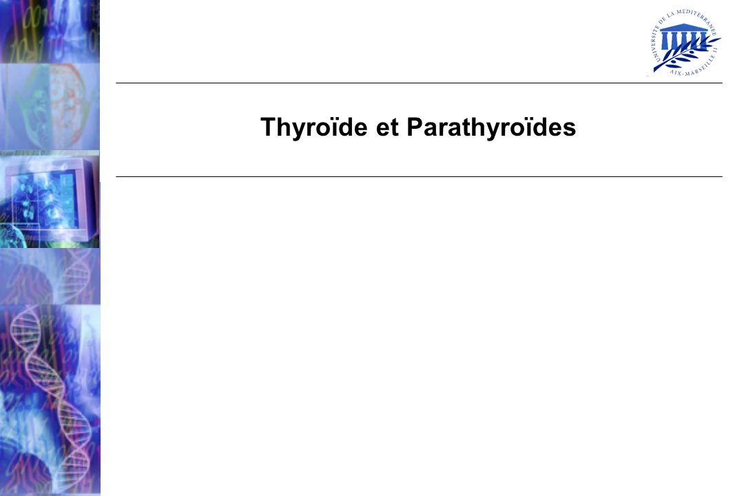 Thyroïde et Parathyroïdes