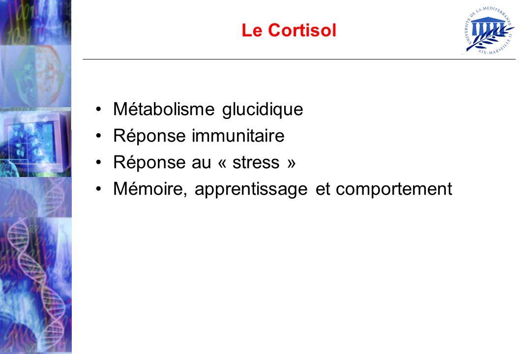 Métabolisme glucidique Réponse immunitaire Réponse au « stress » Mémoire, apprentissage et comportement Le Cortisol