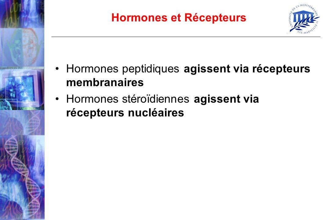 Hormones peptidiques agissent via récepteurs membranaires Hormones stéroïdiennes agissent via récepteurs nucléaires Hormones et Récepteurs
