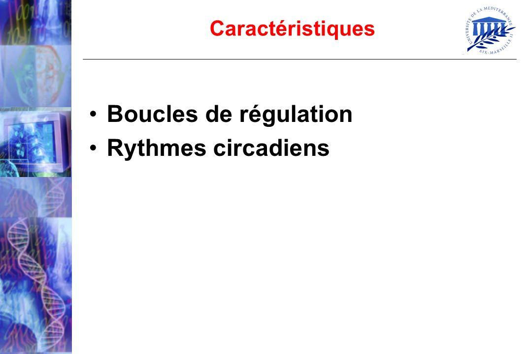Boucles de régulation Rythmes circadiens Caractéristiques