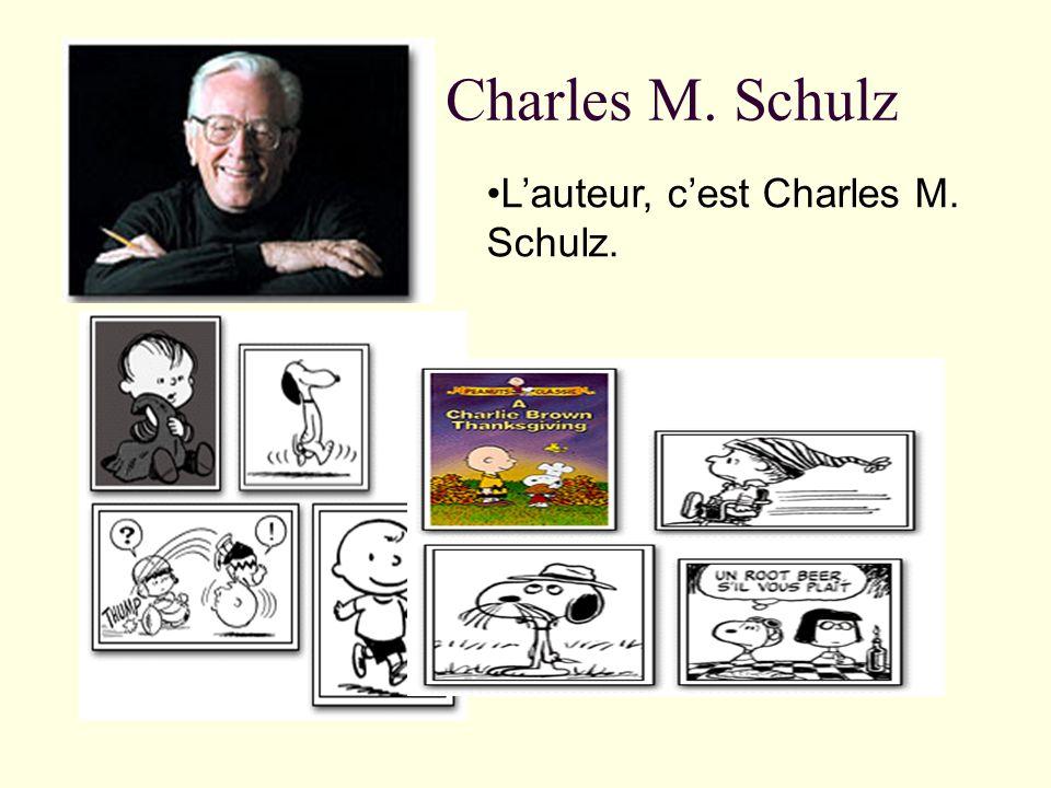 Charlie Brown Cest un petit garçon. Il porte souvent un pull jaune et noir. Il na pas de chance.