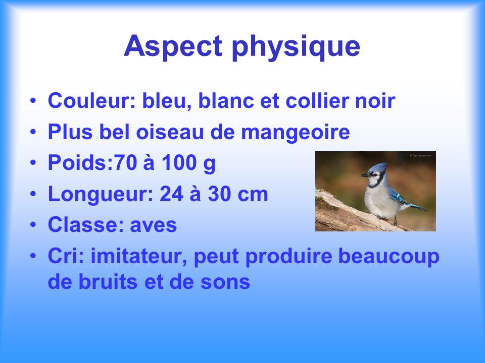 Aspect physique Couleur: bleu, blanc et collier noir Plus bel oiseau de mangeoire Poids:70 à 100 g Longueur: 24 à 30 cm Classe: aves Cri: imitateur, p