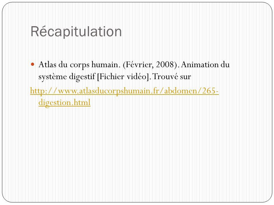 Récapitulation Atlas du corps humain. (Février, 2008). Animation du système digestif [Fichier vidéo]. Trouvé sur http://www.atlasducorpshumain.fr/abdo