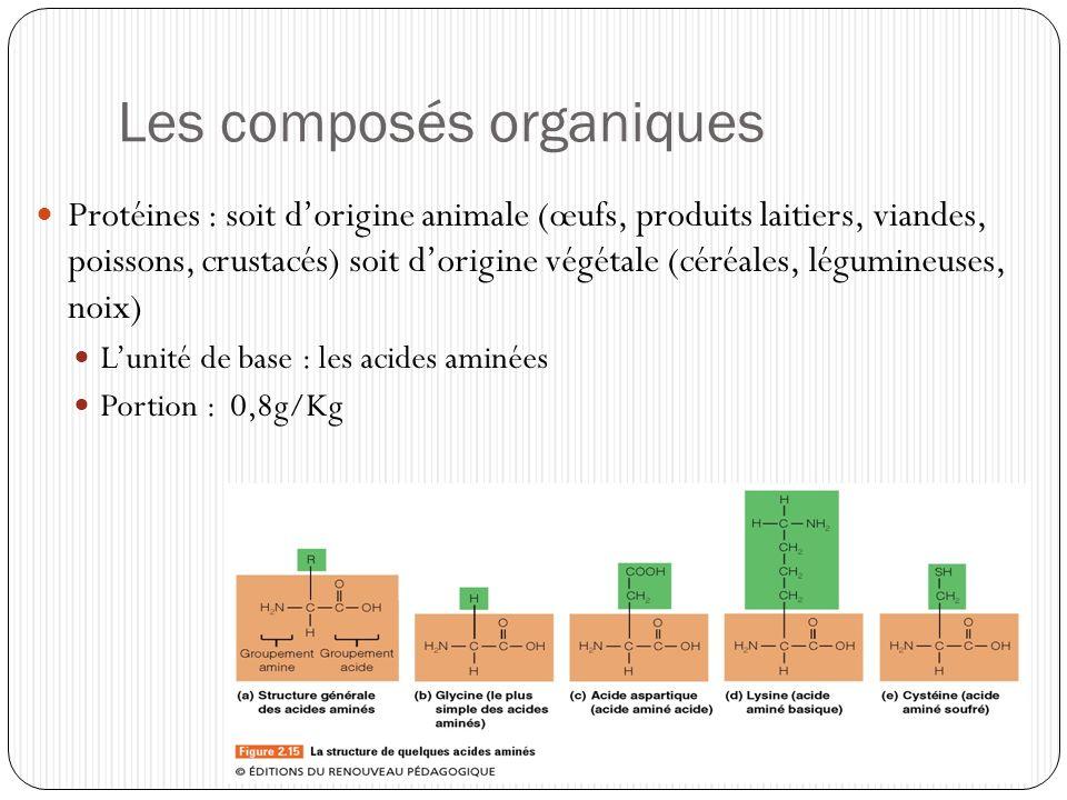 Les composés organiques Protéines : soit dorigine animale (œufs, produits laitiers, viandes, poissons, crustacés) soit dorigine végétale (céréales, lé