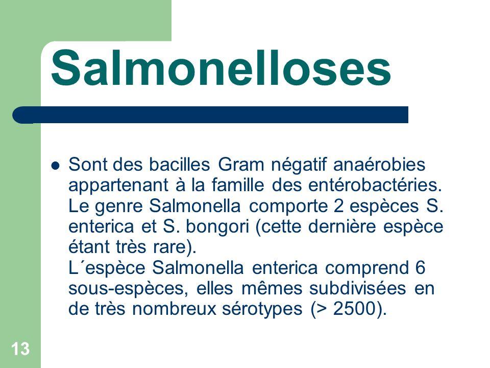 13 Salmonelloses Sont des bacilles Gram négatif anaérobies appartenant à la famille des entérobactéries.