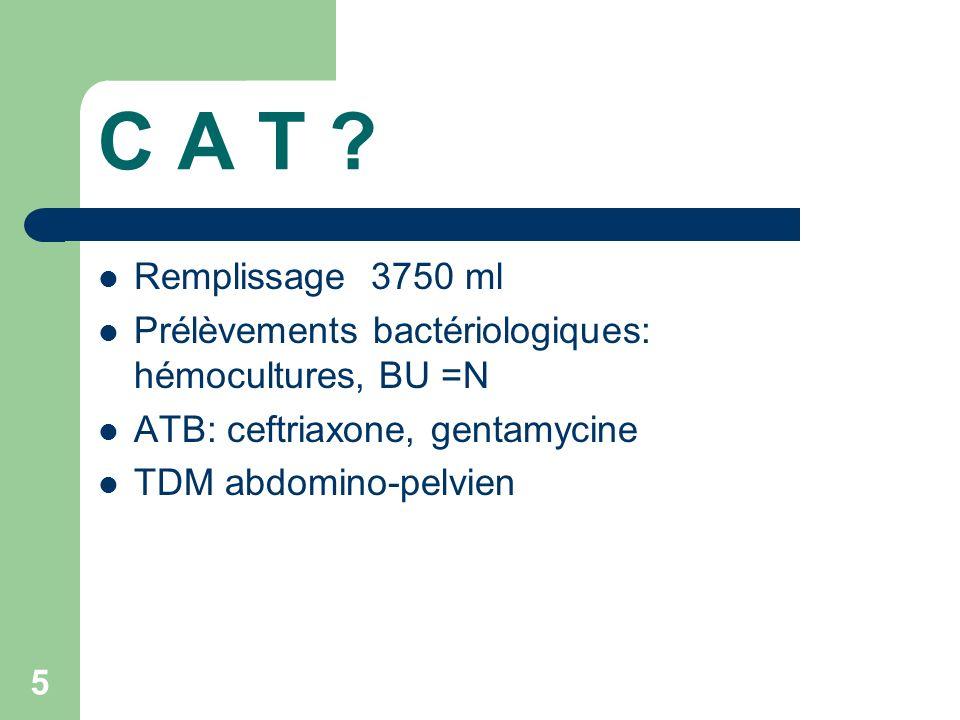 16 Salmonella ABCES bovismorbificans SPLENIQUES sérotype relativement commun cas sporadiques ou petits foyers familiaux, plus rarement épidémie sur tous les continents abcès spléniques à pyogènes sont rares et potentiellement graves symptomatologie clinique discrète et non spécifique rôle de limagerie