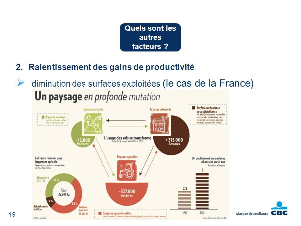 2.Ralentissement des gains de productivité diminution des surfaces exploitées (le cas de la France) Quels sont les autres facteurs ? 19