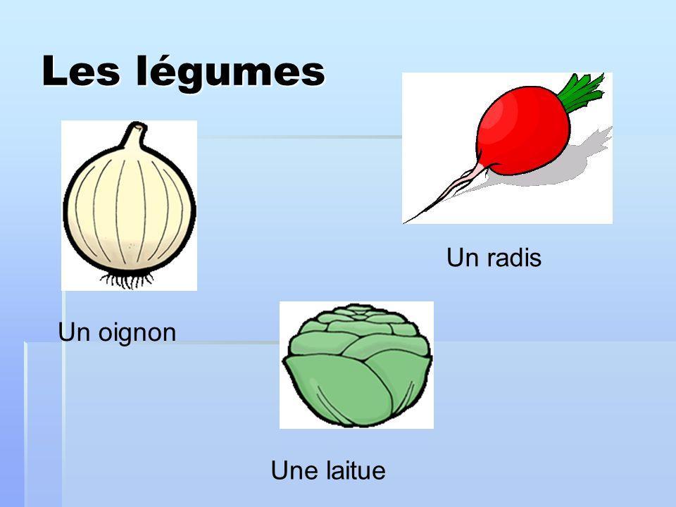 Les légumes Un oignon Un radis Une laitue