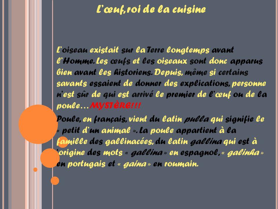 Lœuf, roi de la cuisine Loiseau existait sur la Terre longtemps avant lHomme.