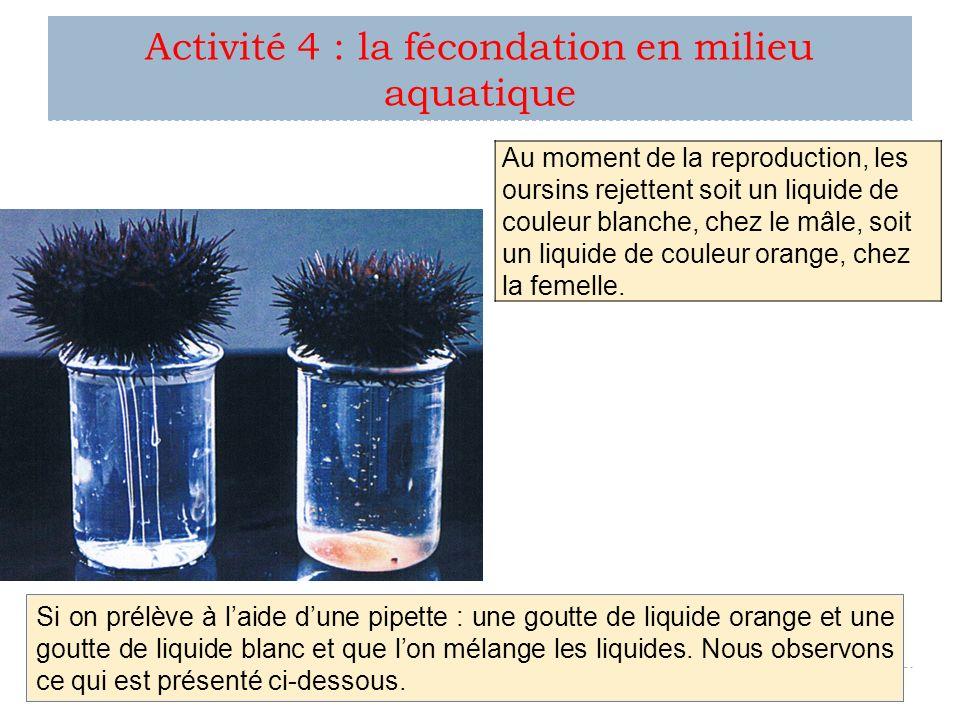 Activité 4 : la fécondation en milieu aquatique Au moment de la reproduction, les oursins rejettent soit un liquide de couleur blanche, chez le mâle,