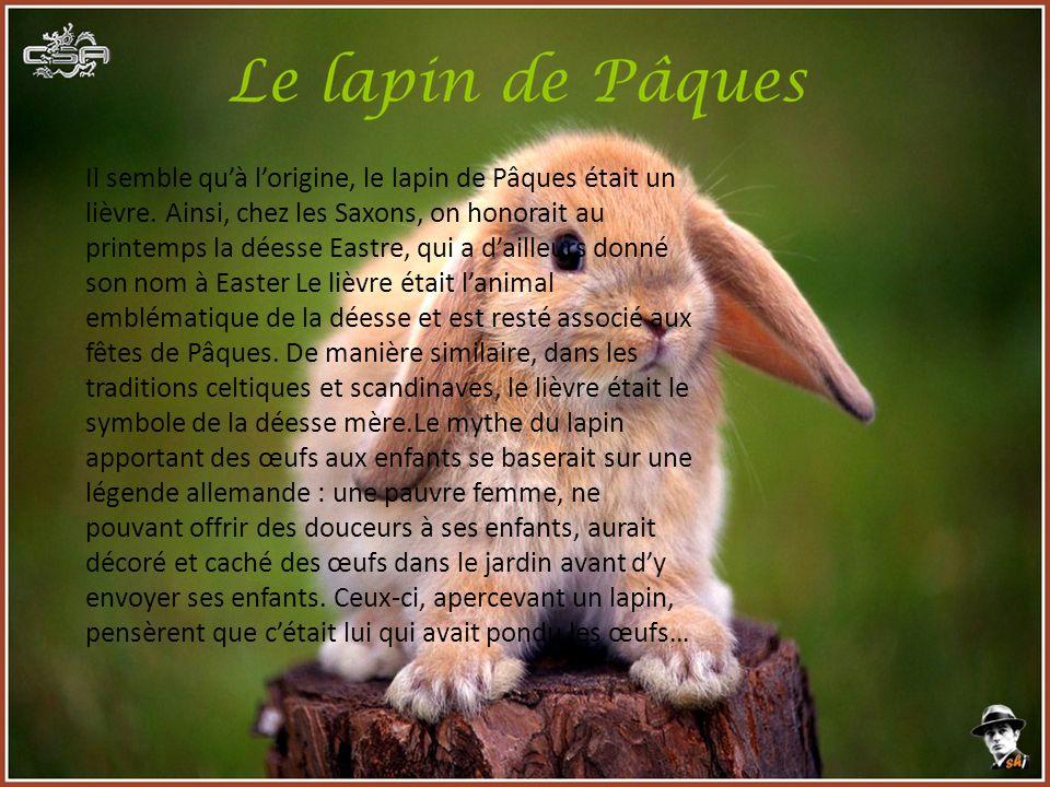 Il semble quà lorigine, le lapin de Pâques était un lièvre. Ainsi, chez les Saxons, on honorait au printemps la déesse Eastre, qui a dailleurs donné s