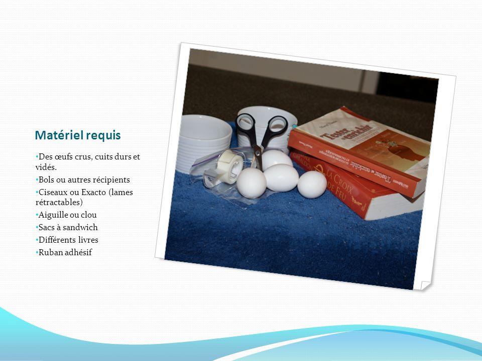 Matériel requis Des œufs crus, cuits durs et vidés. Bols ou autres récipients Ciseaux ou Exacto (lames rétractables) Aiguille ou clou Sacs à sandwich