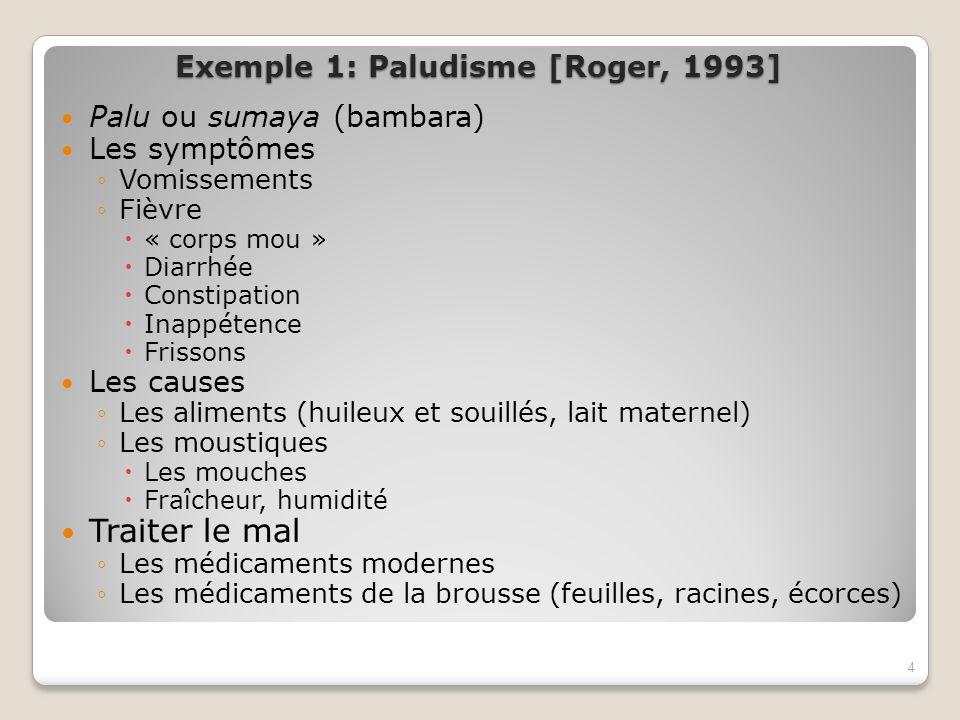 Exemple 1: Paludisme [Roger, 1993] Palu ou sumaya (bambara) Les symptômes Vomissements Fièvre « corps mou » Diarrhée Constipation Inappétence Frissons