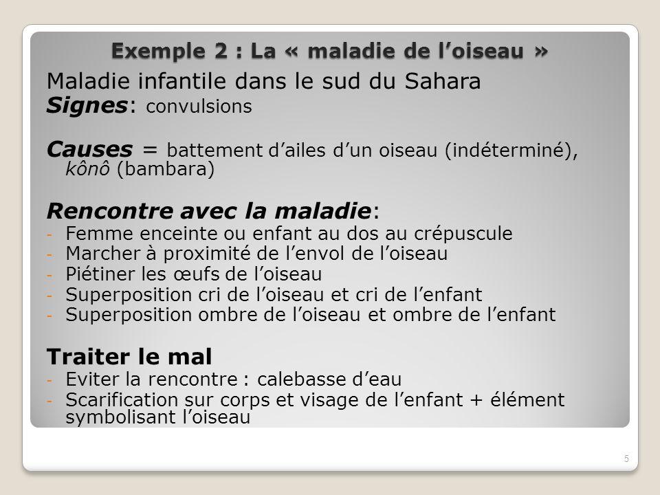Exemple 2 : La « maladie de loiseau » Maladie infantile dans le sud du Sahara Signes: convulsions Causes = battement dailes dun oiseau (indéterminé),