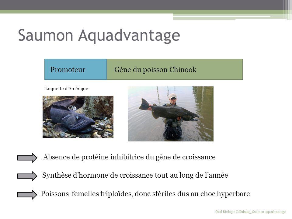 Saumon Aquadvantage Gène du poisson ChinookPromoteur Synthèse dhormone de croissance tout au long de lannée Oral Biologie Cellulaire_ Saumon Aquadvant