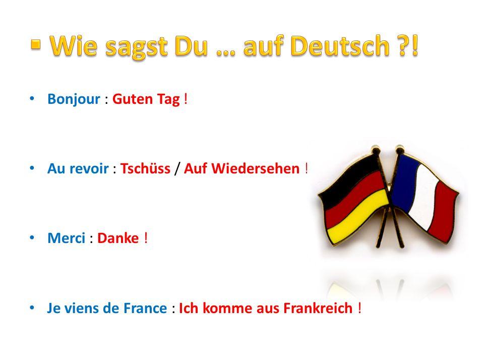 Bonjour : Guten Tag ! Au revoir : Tschüss / Auf Wiedersehen ! Merci : Danke ! Je viens de France : Ich komme aus Frankreich !