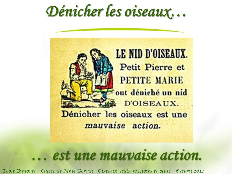 Ecole Bimorel – Classe de Mme Bertin – Oiseaux, nids, nichoirs et œufs – 6 avril 2012 Dénicher les oiseaux… … est une mauvaise action.