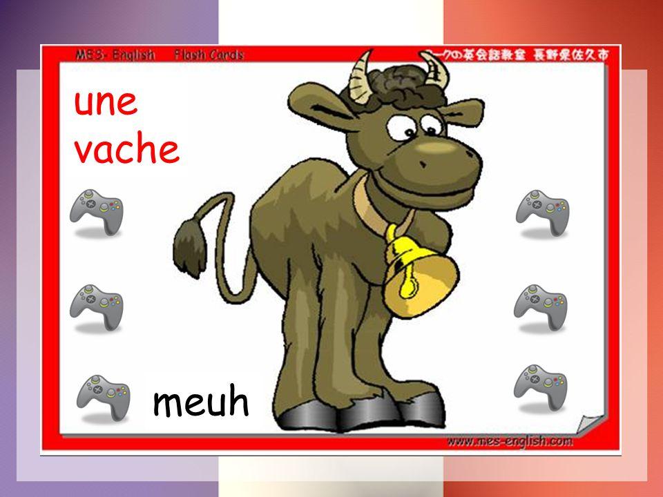 une vache meuh