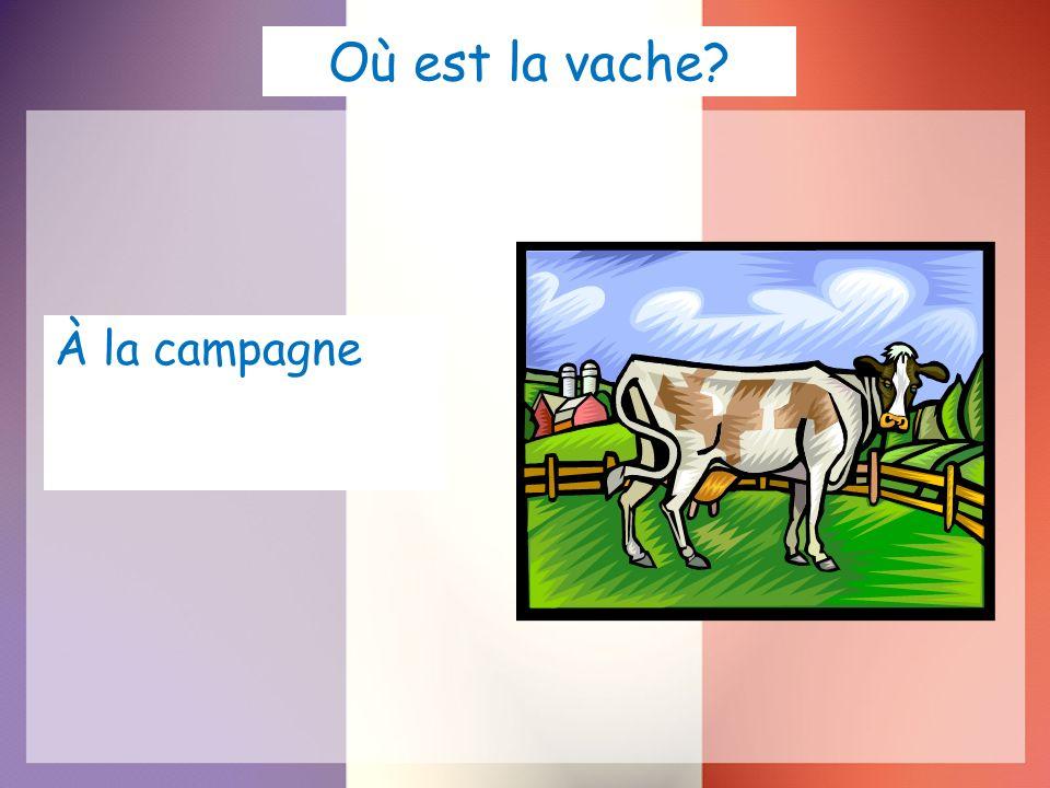 Où est la vache? À la campagne