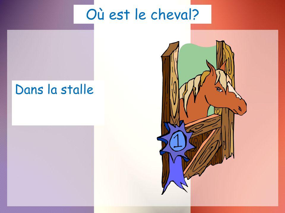 Où est le cheval? Dans la stalle