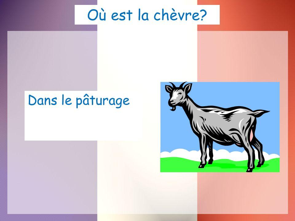 Où est la chèvre? Dans le pâturage