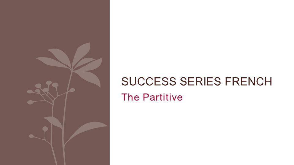 The Partitive SUCCESS SERIES FRENCH