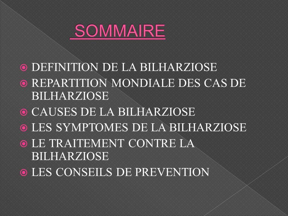 DEFINITION DE LA BILHARZIOSE REPARTITION MONDIALE DES CAS DE BILHARZIOSE CAUSES DE LA BILHARZIOSE LES SYMPTOMES DE LA BILHARZIOSE LE TRAITEMENT CONTRE LA BILHARZIOSE LES CONSEILS DE PREVENTION