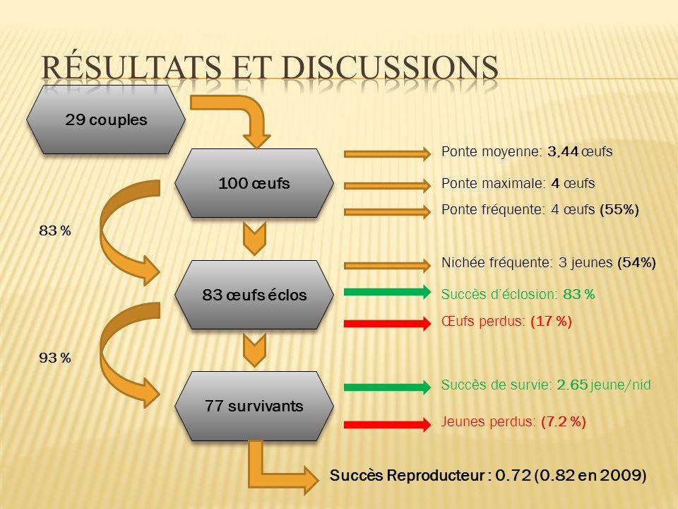 29 couples 100 œufs 77 survivants 83 œufs éclos Ponte moyenne: 3,44 œufs Ponte maximale: 4 œufs Ponte fréquente: 4 œufs (55%) Nichée fréquente: 3 jeunes (54%) Succès déclosion: 83 % Œufs perdus: (17 %) Succès de survie: 2.65 jeune/nid Jeunes perdus: (7.2 %) Succès Reproducteur : 0.72 (0.82 en 2009) 83 % 93 %