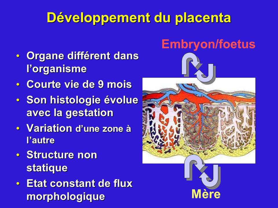 Développement du placenta Organe différent dans lorganisme Organe différent dans lorganisme Courte vie de 9 mois Courte vie de 9 mois Son histologie é