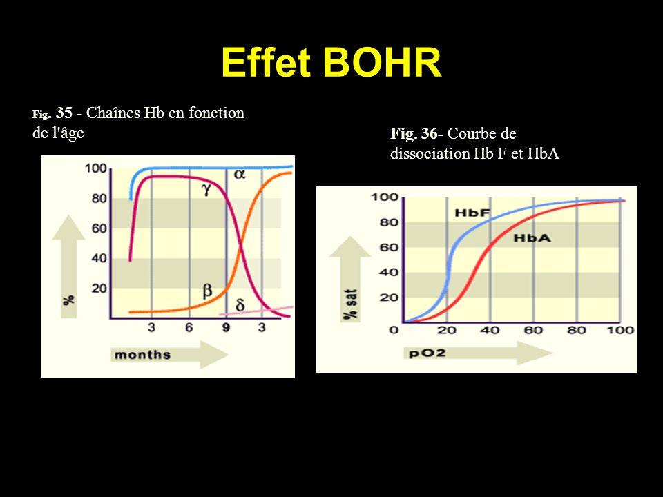 Effet BOHR Fig. 35 - Chaînes Hb en fonction de l'âge Fig. 36- Courbe de dissociation Hb F et HbA