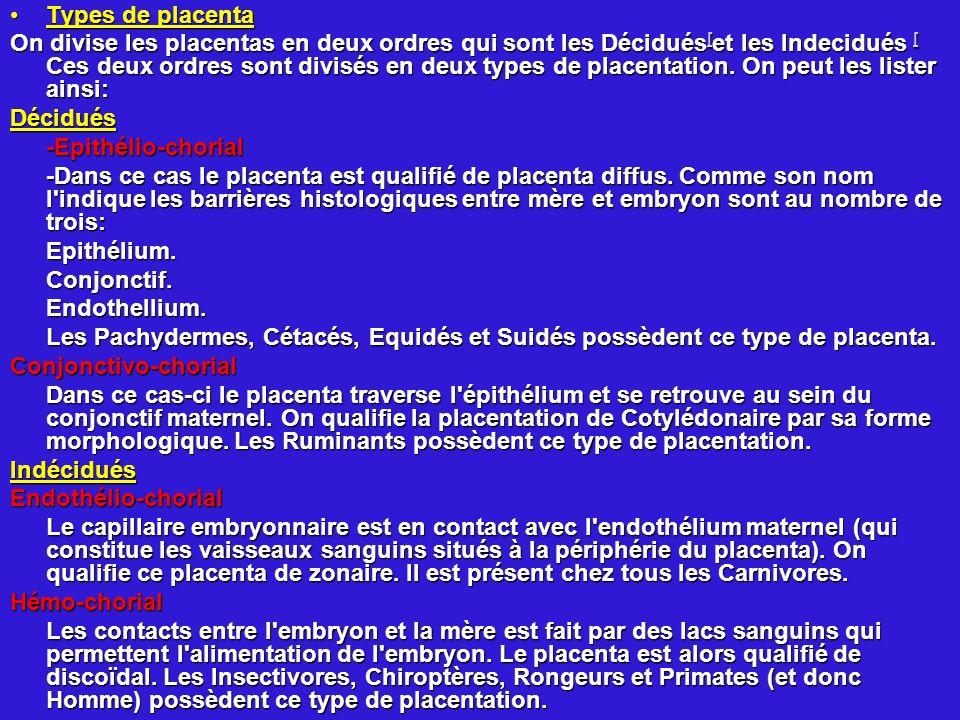 Types de placentaTypes de placenta On divise les placentas en deux ordres qui sont les Décidués [ et les Indecidués [ Ces deux ordres sont divisés en