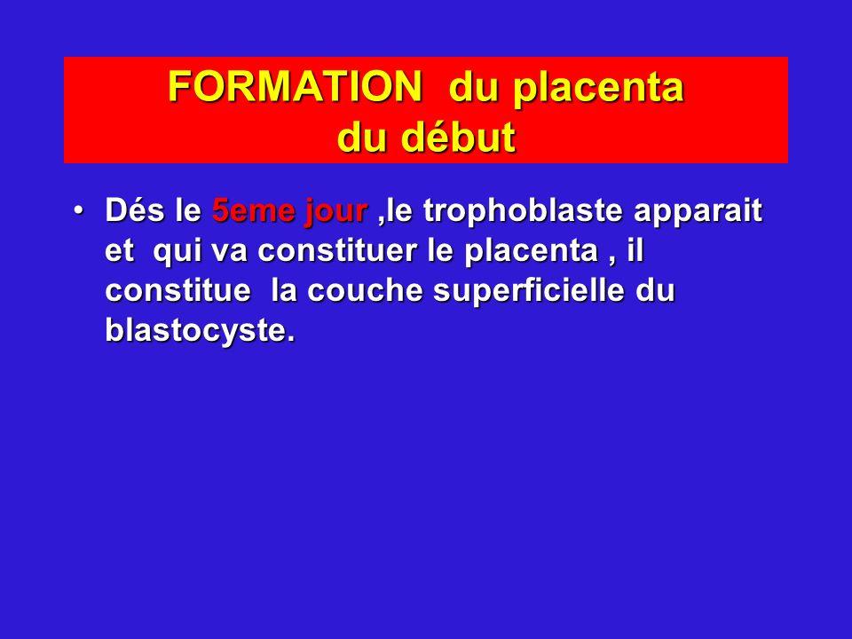 FORMATION du placenta du début Dés le 5eme jour,le trophoblaste apparait et qui va constituer le placenta, il constitue la couche superficielle du bla